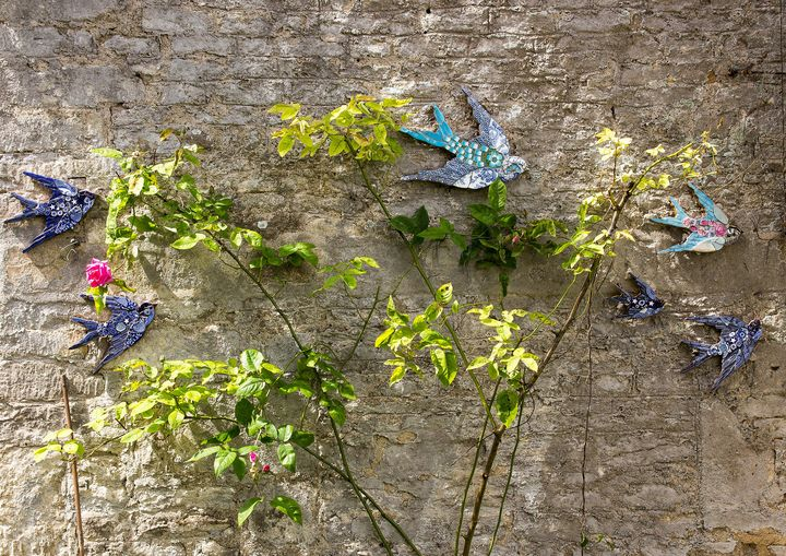 Swallows - JT54Photography