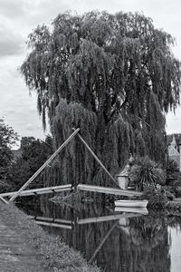 Willow Boat and Bridge Monochrome