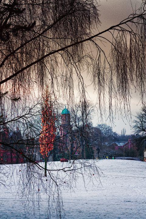 Winter Light - JT54Photography
