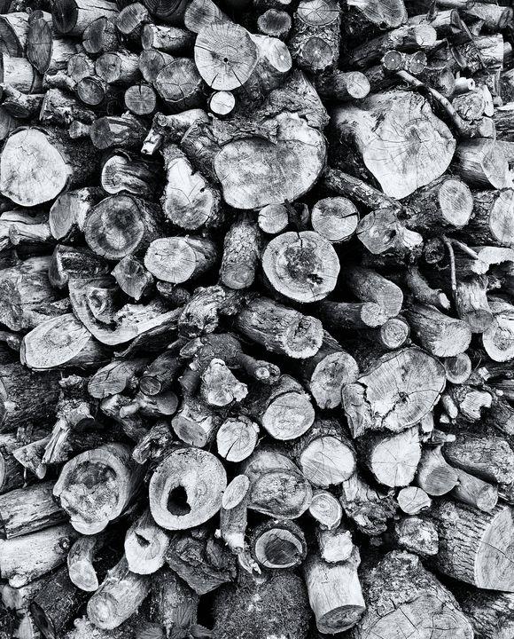 Wood Stockpile Monochrome - JT54Photography