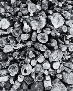 Wood Stockpile Monochrome