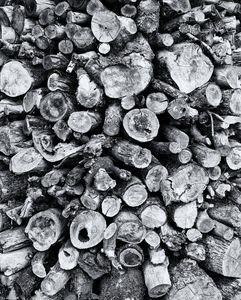 Wood Stockpile Monochrome