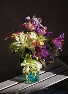 Lillies In Sunlight