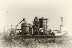 Industrial Plant Monochroe