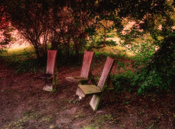 Three Seats In Woodland - JT54Photography