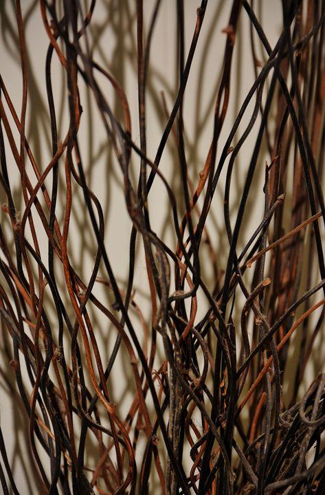 Wood Reeds - Lurenah