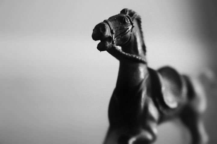 Toy Horse in Black and White - Kelly Hazel