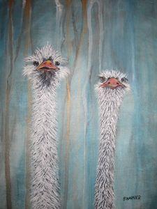 Ostrich I
