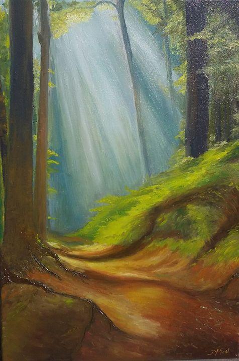 Balade en Forêt - Jean-marie Nicol