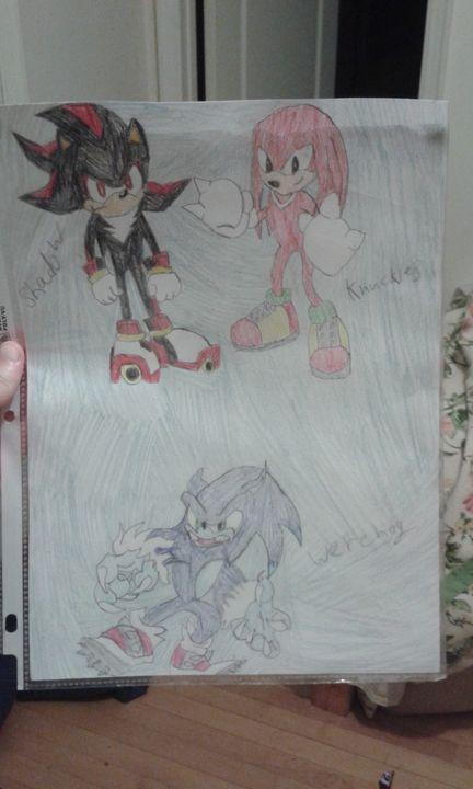 Sonic the hedgehog characters - Silverdragonwolf