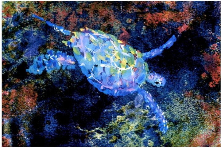 Honu ( Turtle) - artistcollection
