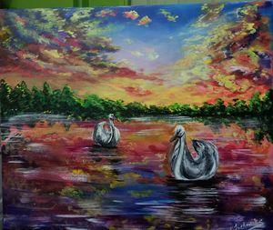 Swans at peace