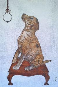 LACED DOG