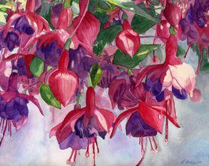 Fuchsia Frenzy - Lynne Reichhart Fine Art