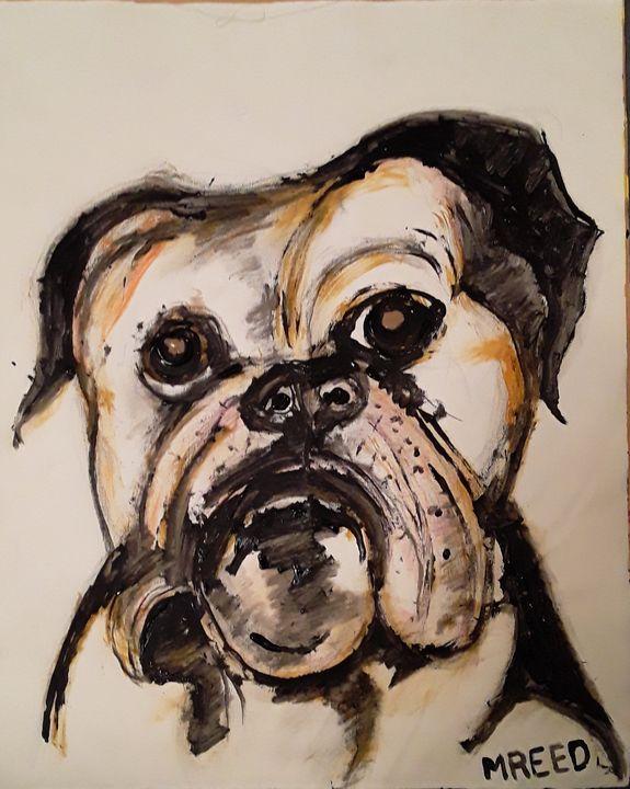 Dog - Reeds gallery