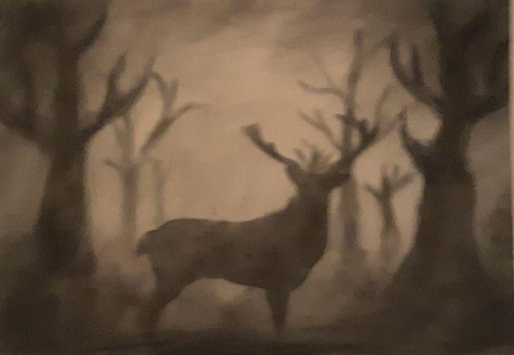 Shadowed deer - D.'s art