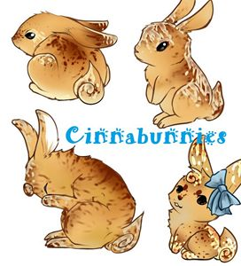 Cinnabunnies