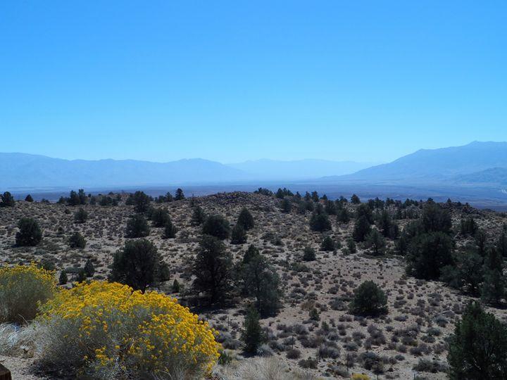 Death Valley - Kerry Chapman
