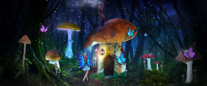 Mushroom Forest - MindScape Studio