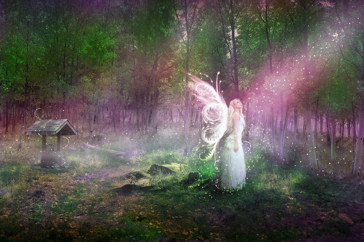 Fairy Forest - MindScape Studio