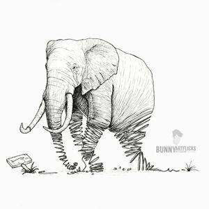 Ivory life
