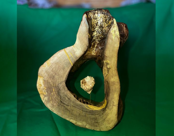 wood & shell - Murex - WoodenseaSK