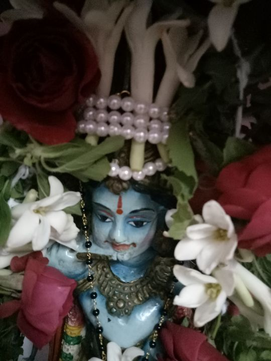 Colorful decorated lord krishna phot - Prakrish
