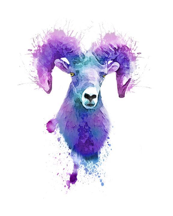 Ram - Always Wright Art