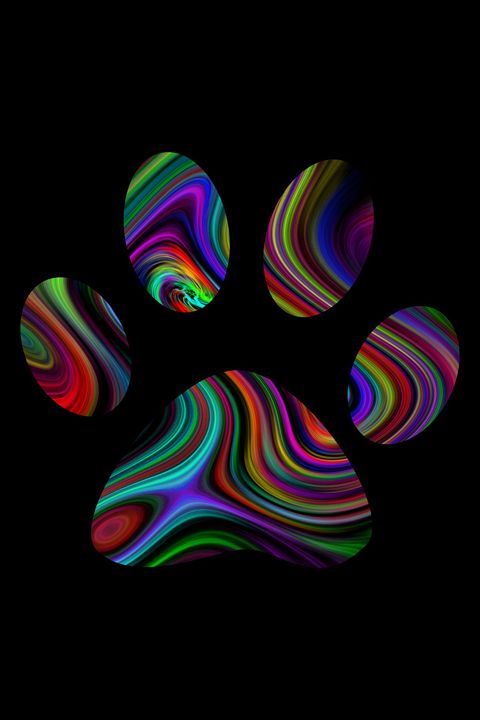Psychedelic Pawprint - Alicia Counter