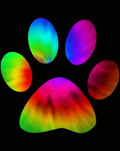 Rainbow Pawprint
