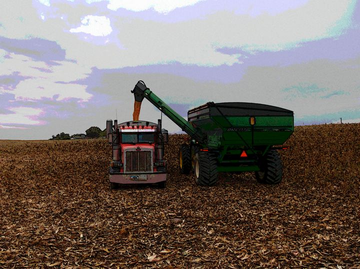 Loading Corn - Randy