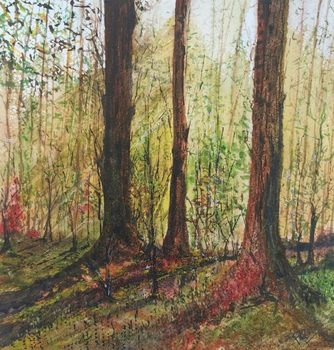 Woodland haze - Peter Manns