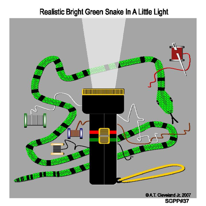 Realistic Bright Green Snake - AC'S Unique Snake Art