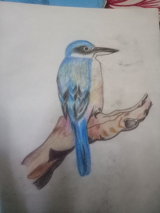 Pencil color shading - Bhavna