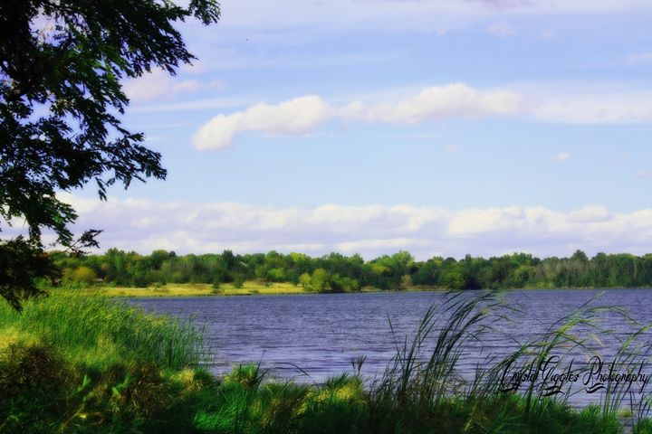 Peaceful Lake - CrystalGigglesPhotography