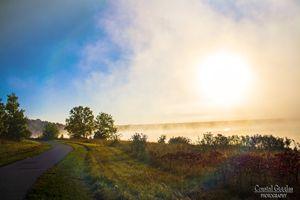 Fog trail in the morning sun