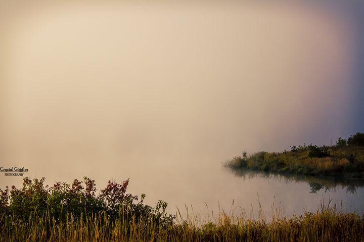 Mysterious Fog - CrystalGigglesPhotography