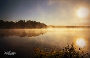 Foggy Sunrise on the Lake