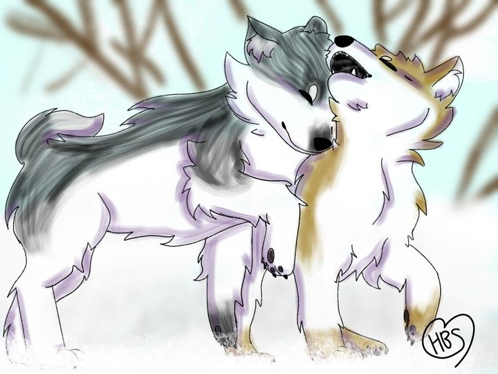 Snow Dogs - HeartBeatStudios