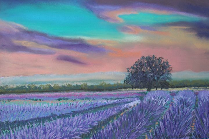 LAVENDER FIELDS IN TURQUOISE SUNSET - D Chambers Art