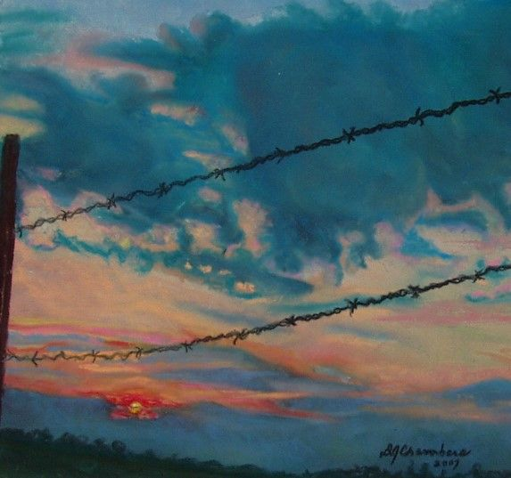 BARBED WIRE SUNSET - D Chambers Art