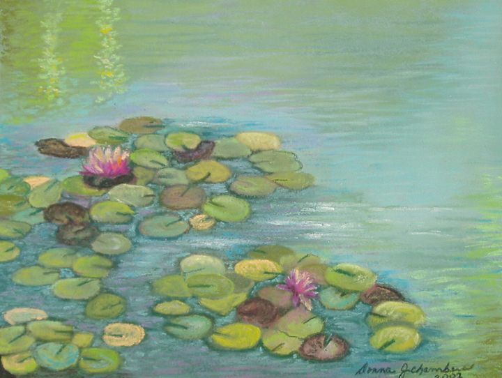PINK WATERLILIES IN A POND - D Chambers Art