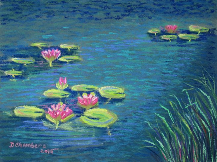 WATERLILIES IN A TURQUOISE POND - D Chambers Art
