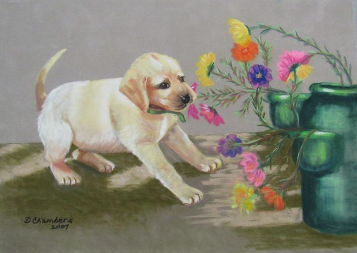 DAISY HELPS IN THE GARDEN - D Chambers Art