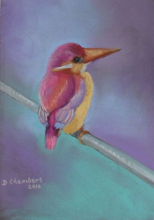 KINGFISHER - D Chambers Art