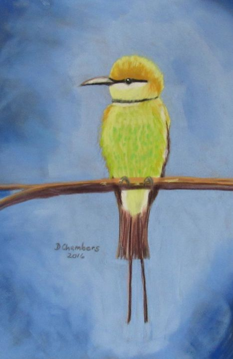 BEE EATER: YELLOW AND GREEN - D Chambers Art