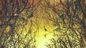 """Mangrove sunset with crane""."