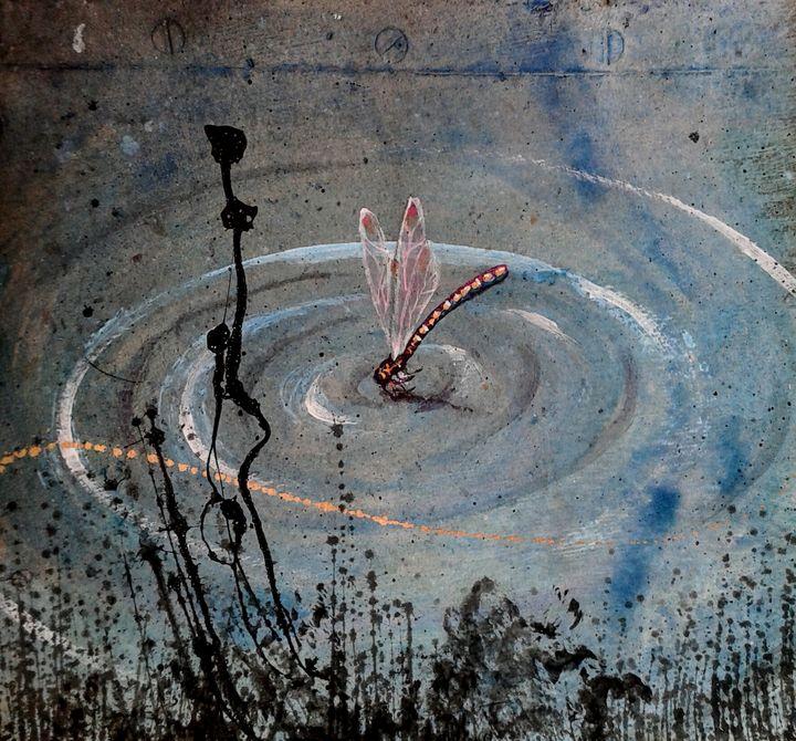 Dragonfly 1 - Rigel Sauri