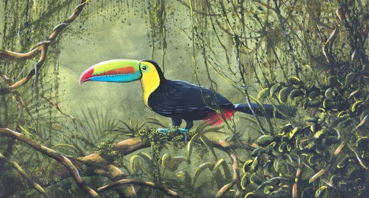 Caribbean toucan - Rigel Sauri