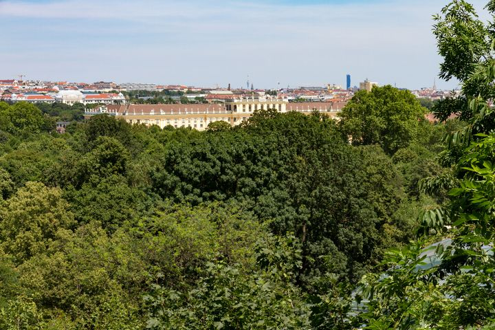 Schoenbrunn Palace - Mikes gallery